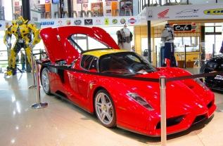 Ferrari Enzo Highlands
